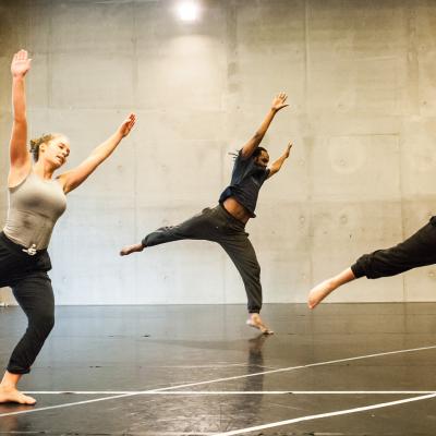 Dansimpuls-eendaagse voor professionele dansdocenten bijna van start!